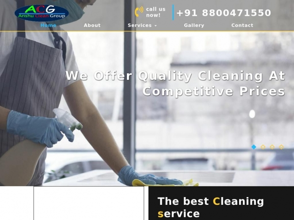 anshucleangroup.co.in