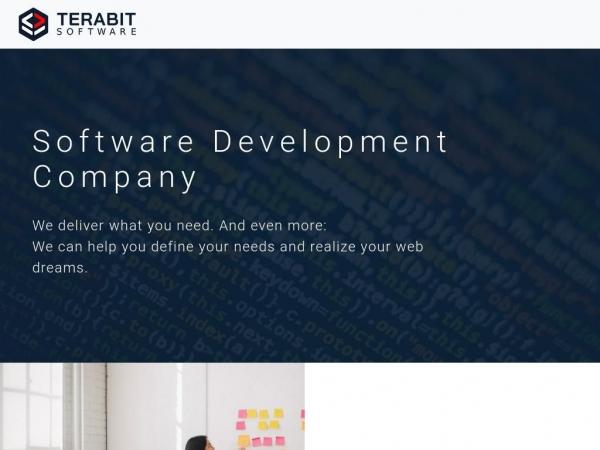 terabitsoftware.com